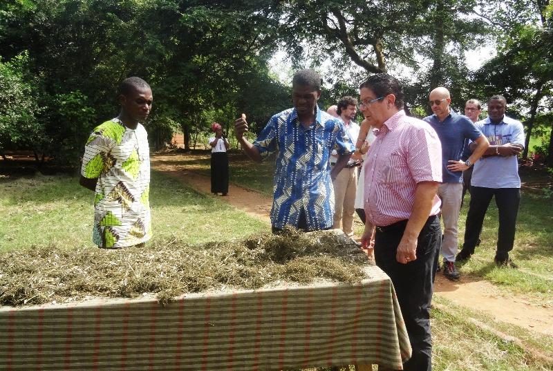 Marc Vizy, centre sichem, Togo