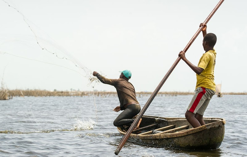 Lac Nangbéto, ministre de l'Agriculture de l'Élevage et la Pêche, repos biologique, ressource halieutique, repeuplement, poisson,